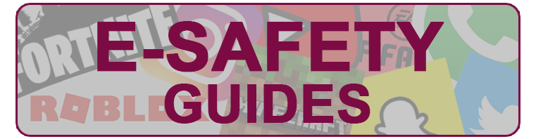 E-Safety Guides